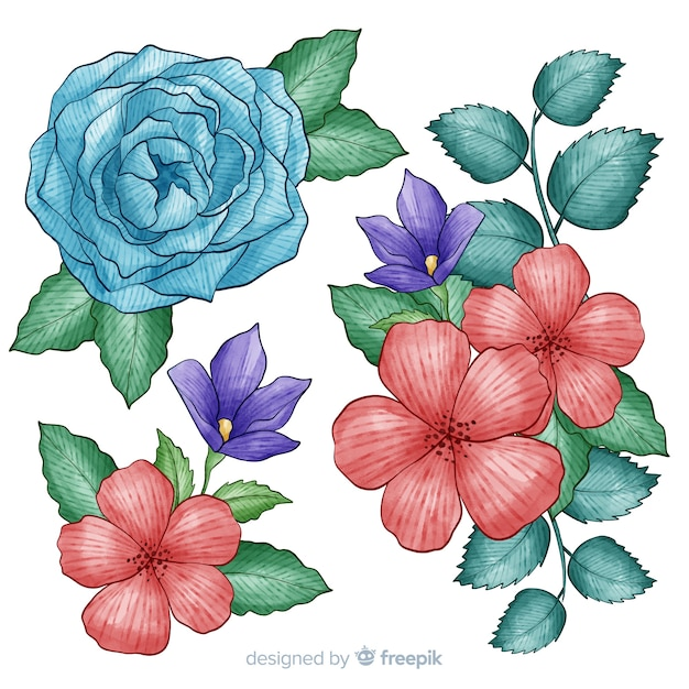 Tropical flowers collection with violets and roses Free Vector