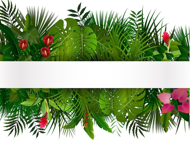 Tropical foliage with horizontal banner isolater Premium Vector