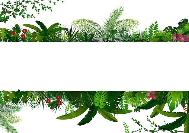 Tropical forest on rectangle white banner for text Premium Vector