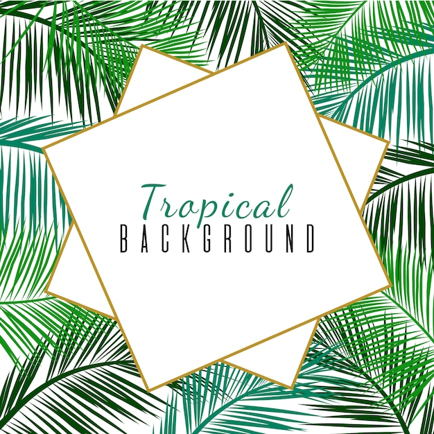 Tropical frame with palms leaves Premium Vector