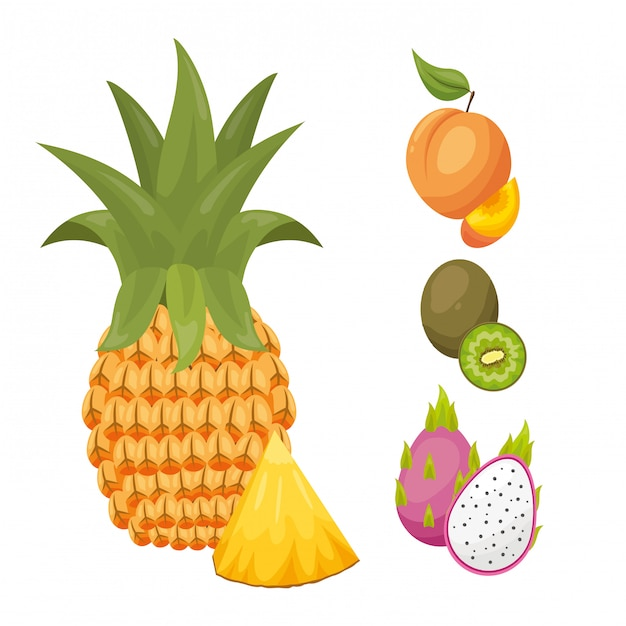 Tropical fruits background Free Vector