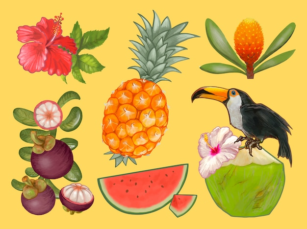 Tropical fruits and flower illustration Free Vector