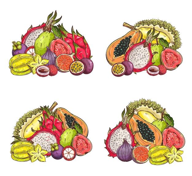 トロピカルフルーツのスケッチ、果樹園でのエキゾチックなライチ、マンゴスチン、イチジクとドラゴン、パッションフルーツまたはピタハヤ、ゴレンシまたはドリアン、パパイヤとグアバ。刻まれたトロピカルフルーツクロップセット Premiumベクター