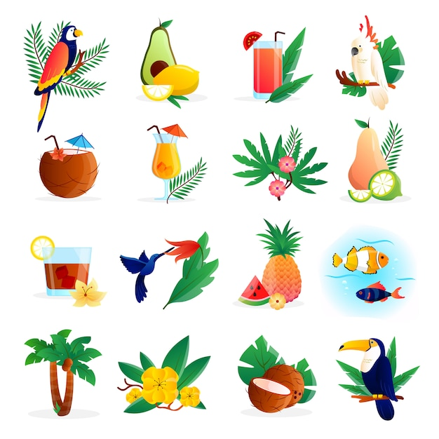 L'icona tropicale ha messo con i frutti e gli uccelli dei fiori dei cocktail Vettore gratuito