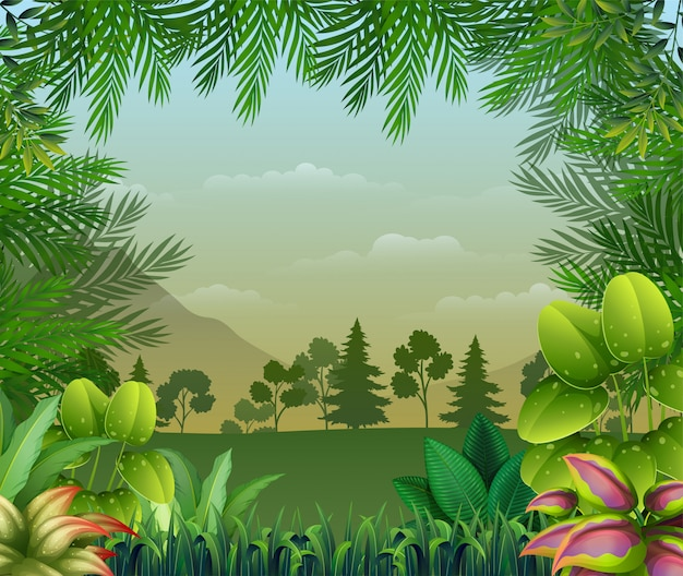 Tropical jungle background with trees and leaves Premium Vector