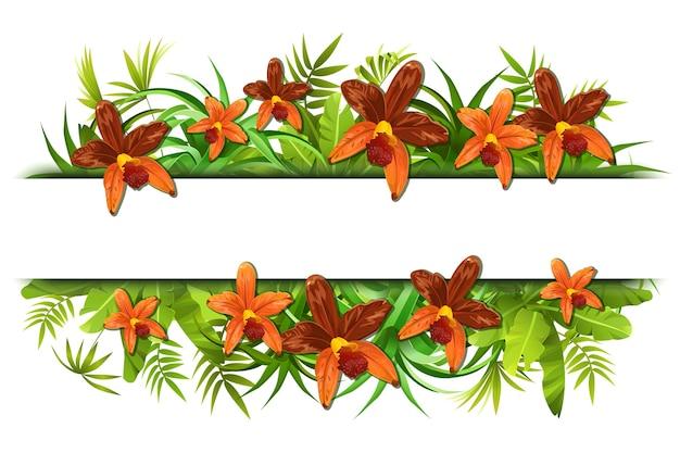 난초와 열 대 정글 프레임입니다. 무료 벡터