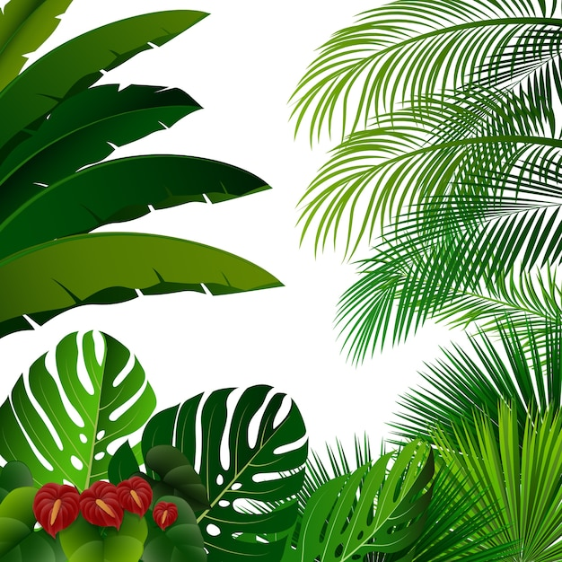 Tropical jungle on white background Premium Vector