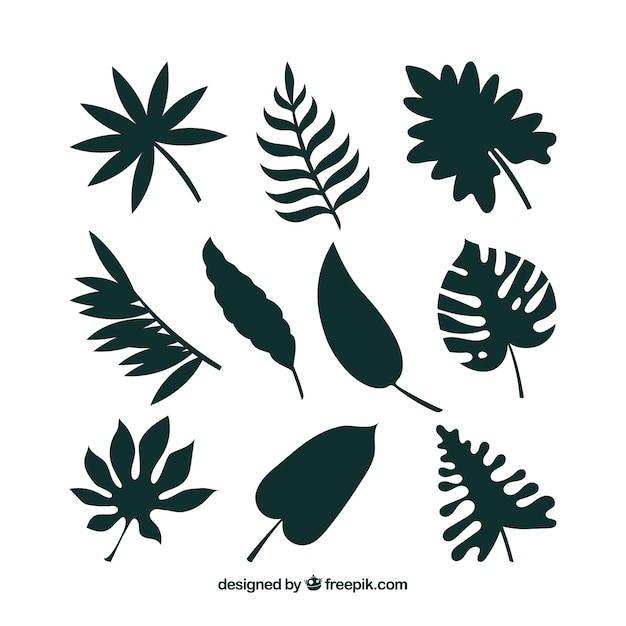 Tropical leaf collection with silhouette\ style
