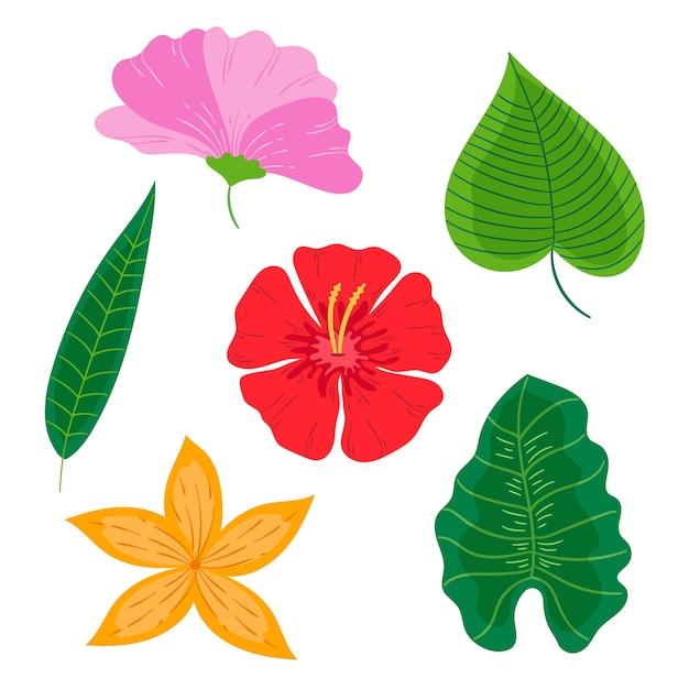 Collezione tropicale di foglie e fiori Vettore gratuito