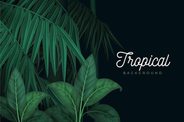 Stile di sfondo di foglie tropicali Vettore gratuito