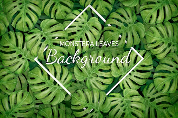 Tropical leaves background with rhombus Free Vector