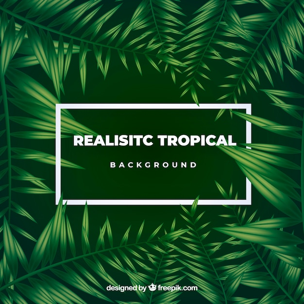 Free Vector Tropical Leaves Background Download premium png of hand drawn tropical leaves transparent background png by donlaya about tropical, leaf, jungle, plant and png 594529. freepik