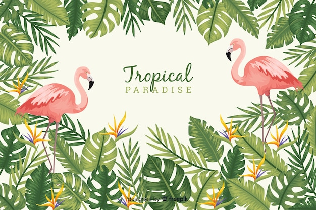 Tropical leaves and birds Free Vector