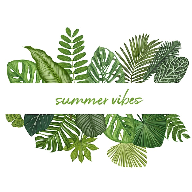 Tropical leaves botanical vector illustration Premium Vector