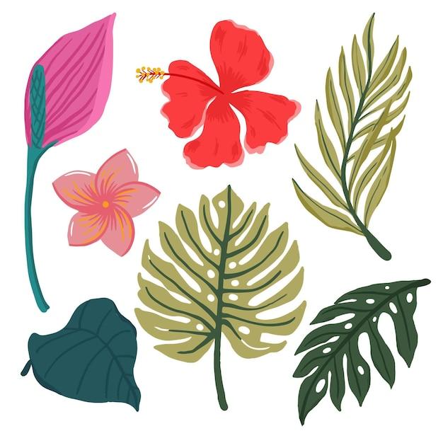 Set di foglie e fiori tropicali Vettore gratuito