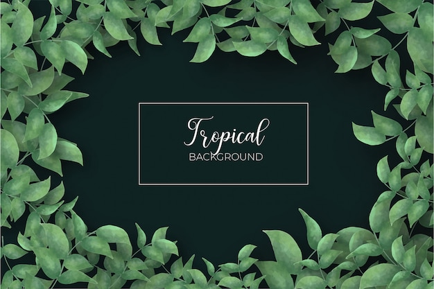 Tropical leaves frame background Free Vector