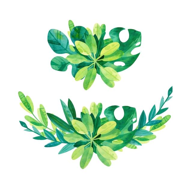Miscela di foglie tropicali - set composizione acquerello. pacchetto di disegni ad acquerello della giungla. clipart di verde Vettore gratuito