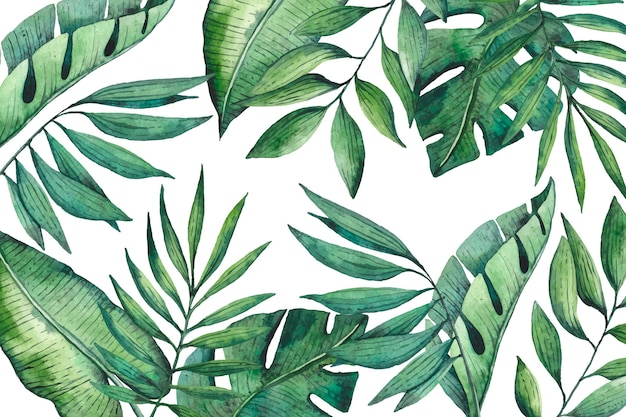 Free Vector Tropical Leaves Wallpaper All free download vector graphic image from category leaf. free vector tropical leaves wallpaper