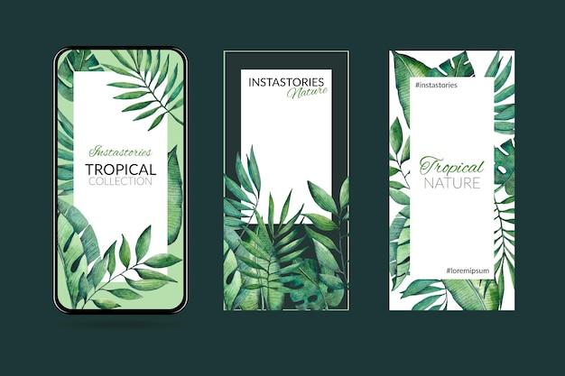 이국적인 잎과 열대 자연 Instagram 이야기 프리미엄 벡터