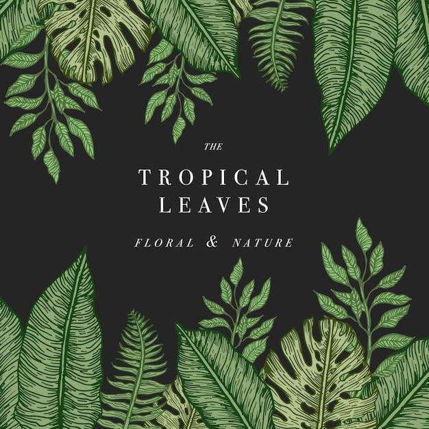 熱帯のヤシの葉。ジャングルテンプレート。図 Premiumベクター