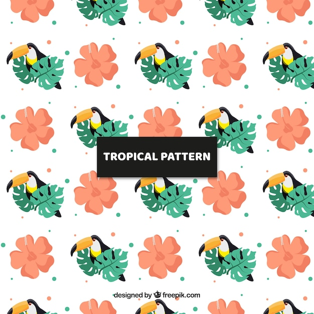Tropical pattern with exotic birds