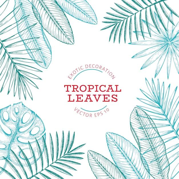 Tropical plants banner design Premium Vector