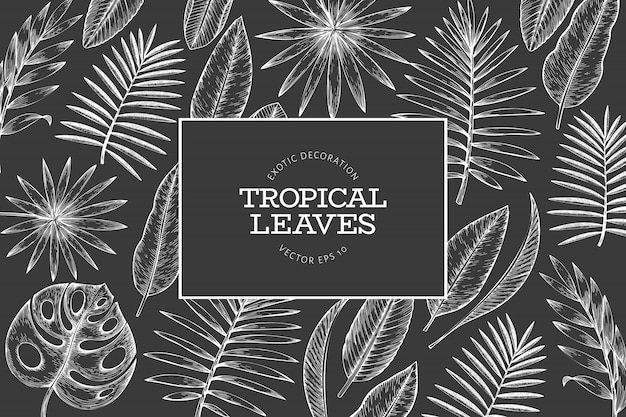 Tropical plants frame . hand drawn tropical summer exotic leaves illustration Premium Vector