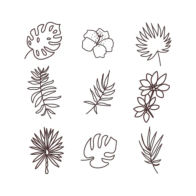 Tropical plants icon set. hand draw Premium Vector