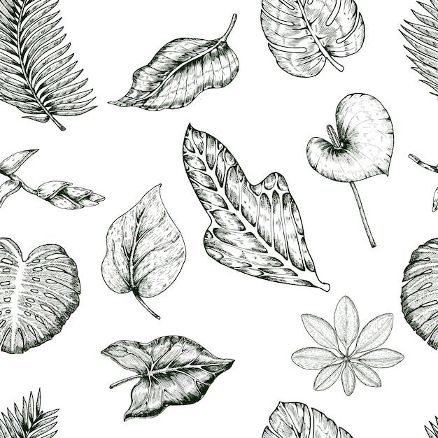 열 대 식물 원활한 패턴 무료 벡터