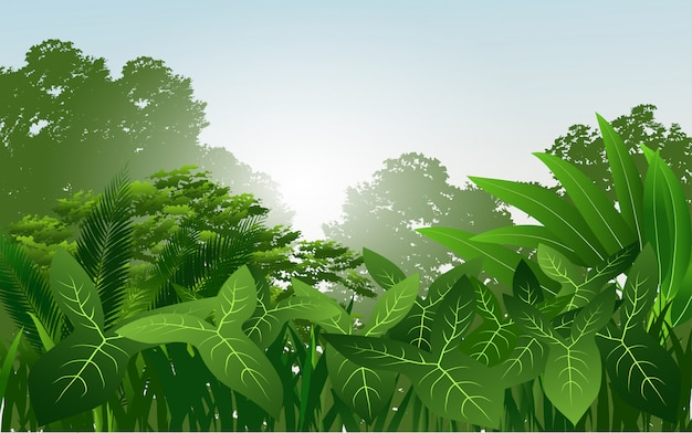 Tropical rainforest vector with green leaves Premium Vector