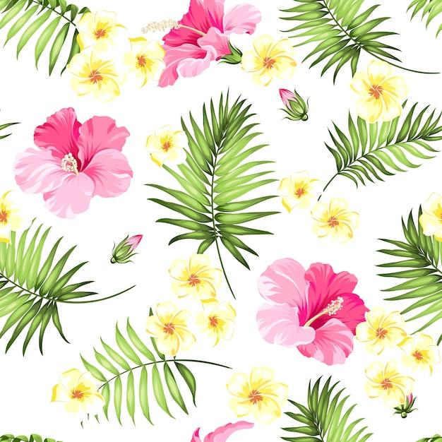 熱帯のシームレスなパターン。咲くハイビスカスと白い背景の上の手のひら。 無料ベクター