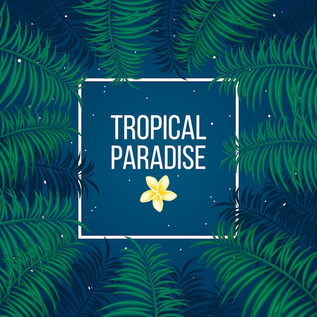 Tropical starry night paradise background template Free Vector