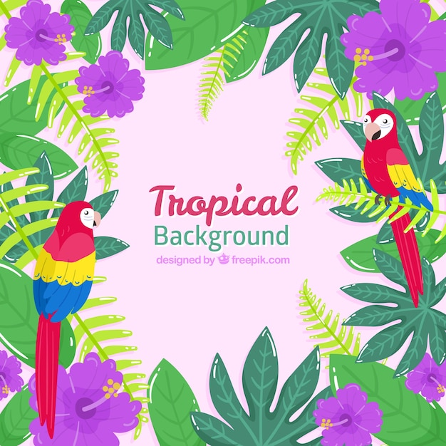 Tropical summer background with birds and\ plants