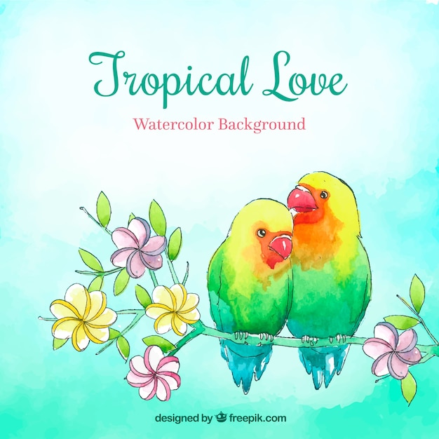 Tropical summer background with birds in\ watercolor style