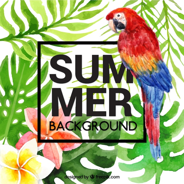 Tropical summer background with parrot