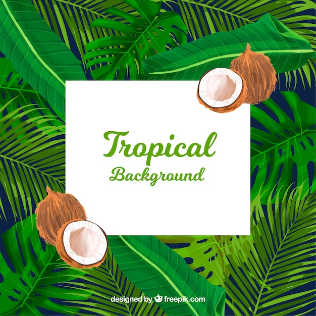 Tropical summer background with plants and coconuts Free Vector