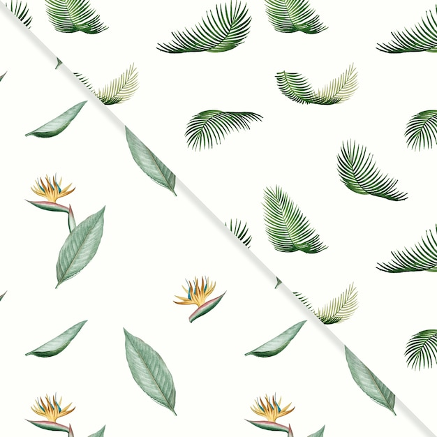 Tropical summer pattern collection Free Vector
