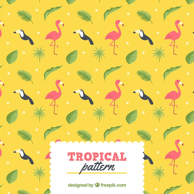 Tropical summer pattern with different\ birds