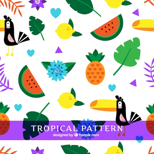 Tropical summer pattern with fruits and\ birds