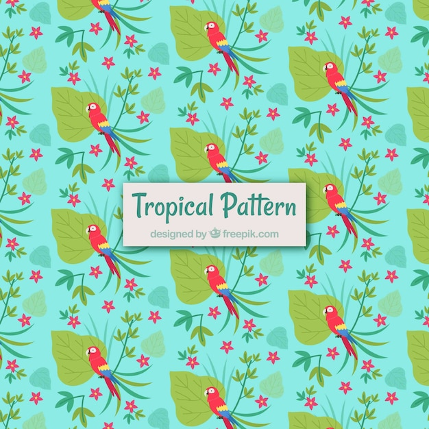 Tropical summer pattern with plants and\ birds