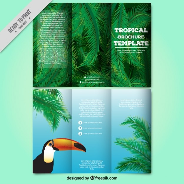 Tropical trifold with a toucan and palm\ leaves