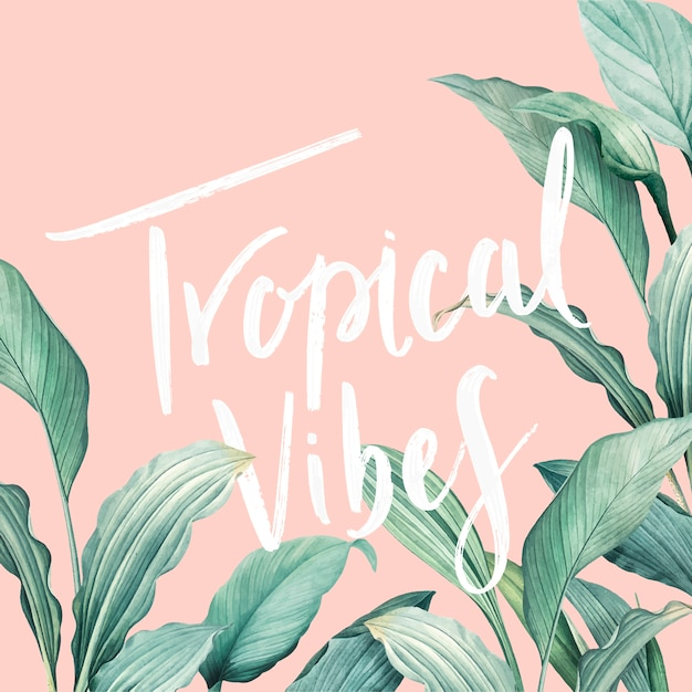 Tropical vibes card Free Vector