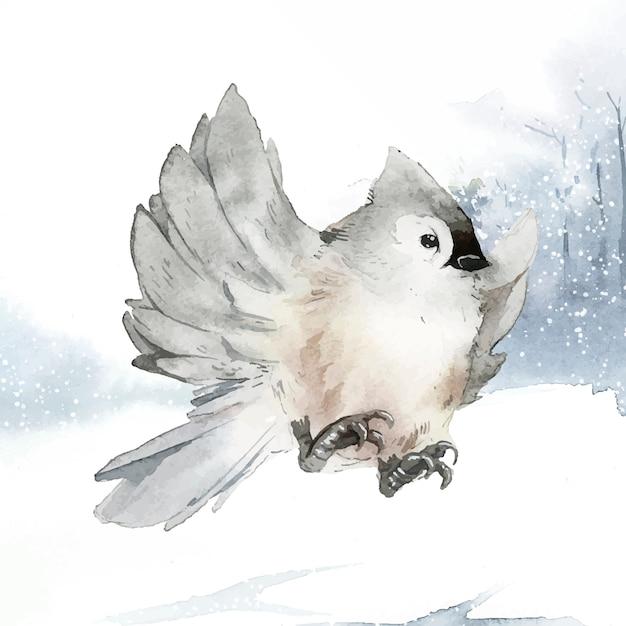 Tufted titmouse bird in wintertime watercolor vector Free Vector