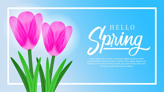 Tulip blossom flower with sky for spring Premium Vector