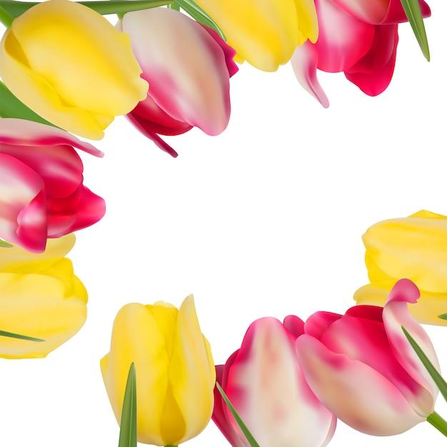복사 공간을 형성하는 튤립 꽃. 프리미엄 벡터