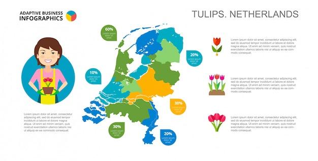Tulips of netherlands slide template Free Vector