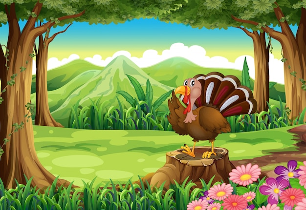 A turkey at the forest Free Vector