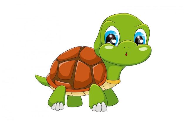 Забавный мультфильм черепаха, изолированные на белом фоне Premium векторы