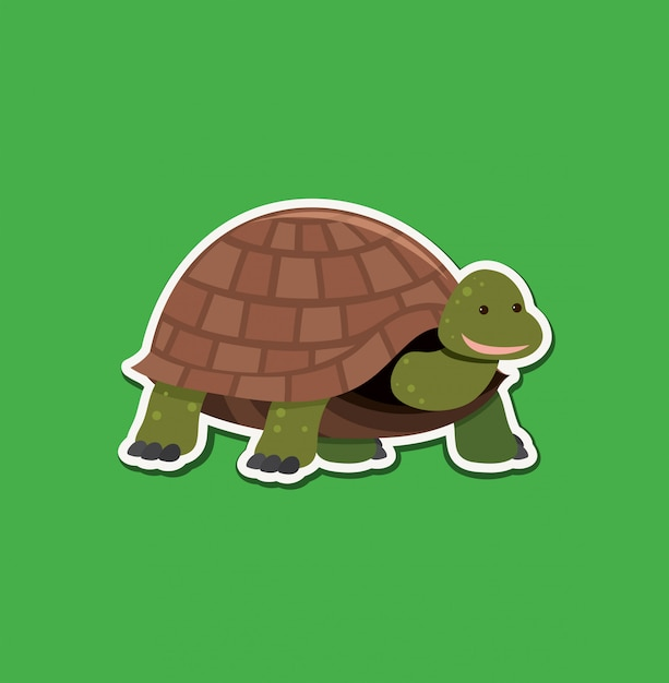 A turtle character sticker Premium Vector