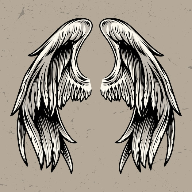 Two angel wings template Free Vector